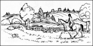 person riding horse on grassy trail
